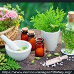 Remedios Homeopáticos para la Gastritis Crónica