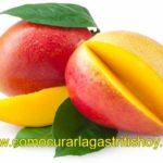 El mango es bueno para la Gastritis