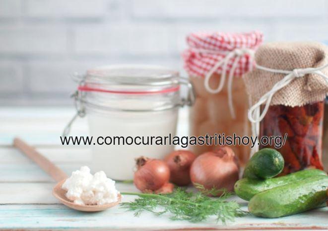 Alimentos con Probióticos Naturales